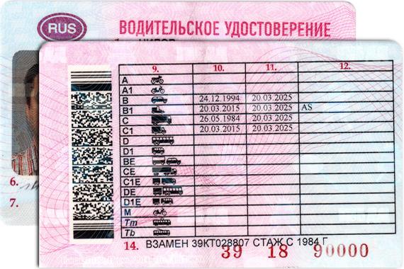 Как выглядит водительское удостоверение